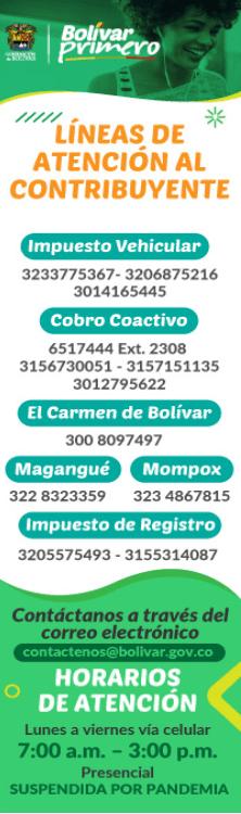 impuestos-vehiculos-bolivar
